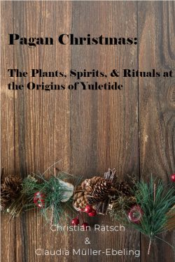 Pagan Christmas: The Plants, Spirits, & Rituals at the Origins of Yuletide
